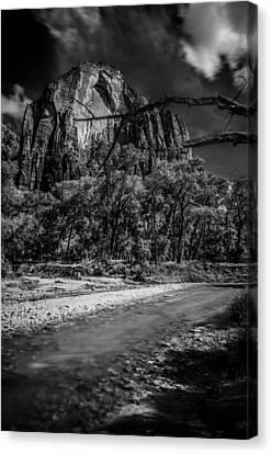 Virgin River Zion National Park Canvas Print by Scott McGuire