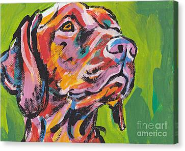 Viva La Vizsla Canvas Print by Lea S