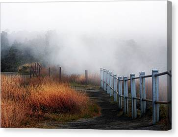 Volcano Fence Canvas Print by Ty Helbach