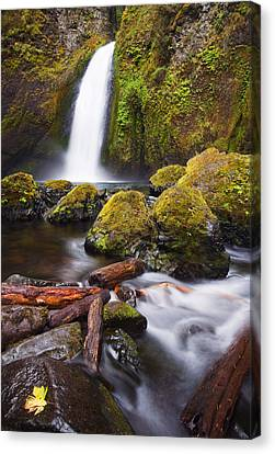Wahclella Canvas Print by Mike  Dawson