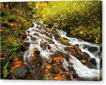 Wahkeena Autumn Canvas Print by Mike  Dawson