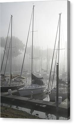 Waiting On The Fog Canvas Print by Laurie With