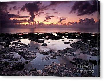 Waiting On The Light Canvas Print by Keith Kapple