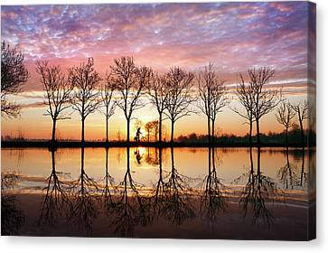 Waking Up Canvas Print by Roeselien Raimond