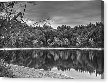 Walden Pond Fall Foliage Concord Ma Black And White Canvas Print by Toby McGuire