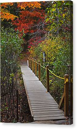 Walden Pond Footbridge Concord Ma Canvas Print by Toby McGuire