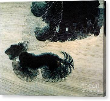 Walking Dog On Leash Canvas Print by Mindy Sommers