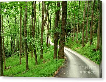 Walking On A Country Road - Appalachian Mountain Backroad Canvas Print by Matt Tilghman