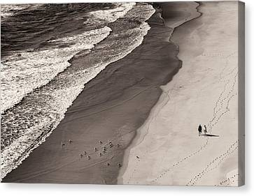 Walking On The Beach Canvas Print by Francesco Caso