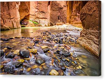 Wall Street Zion National Park Canvas Print by Scott McGuire