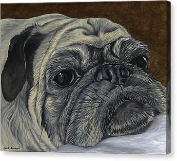 Walter Canvas Print by Twyla Francois