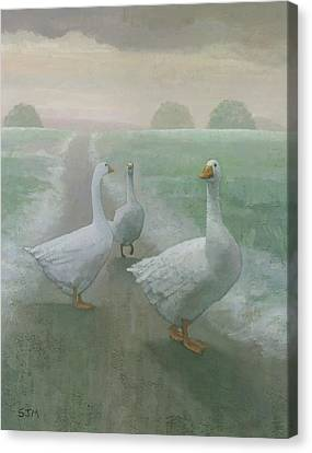 Wandering Geese Canvas Print by Steve Mitchell