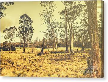 Waratah Tasmania Bush Landscape Canvas Print by Jorgo Photography - Wall Art Gallery