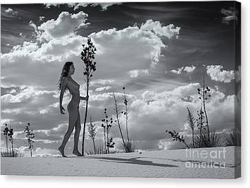 Warrior Canvas Print by Inge Johnsson