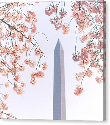 Washington Monument Spring Celebration  Canvas Print by Olivier Le Queinec