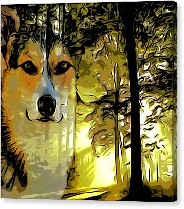 Watcher Of The Woods Canvas Print by Kathy Kelly