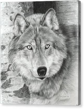 Watchful Eyes Canvas Print by Carla Kurt