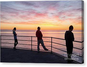 Watching Fishing Texting Canvas Print by Ray Warren