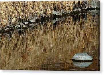 Water Colored  Canvas Print by Steven Milner