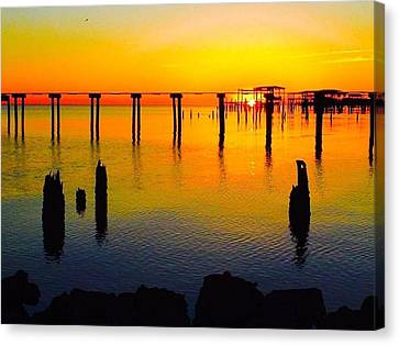 Water Colours Canvas Print by John Patin