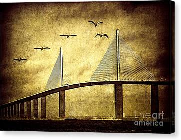 Water Crossing Canvas Print by Todd Bielby