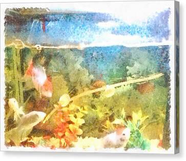 Water Level In An Aquarium Canvas Print by Ashish Agarwal