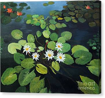 Water Lilies Canvas Print by Kiril Stanchev