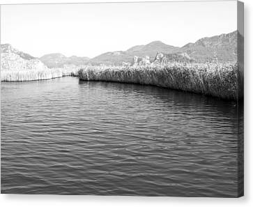 Water Scene In B And W Canvas Print by Svetlana Sewell
