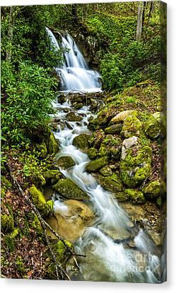 Waterfall Back Fork Of Elk Canvas Print by Thomas R Fletcher