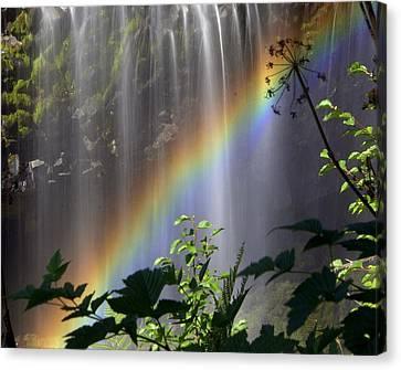Waterfall Rainbow Canvas Print by Marty Koch