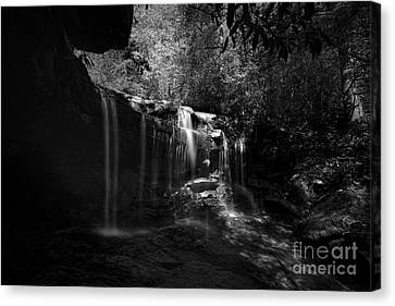 Waterfalls On Small Mountain Stream In West Virginia Canvas Print by Dan Friend
