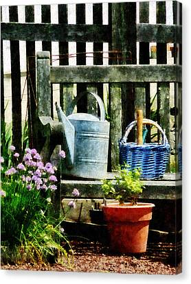Watering Can And Blue Basket Canvas Print by Susan Savad