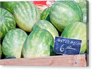 Watermelons With A Price Sign Canvas Print by Paul Velgos