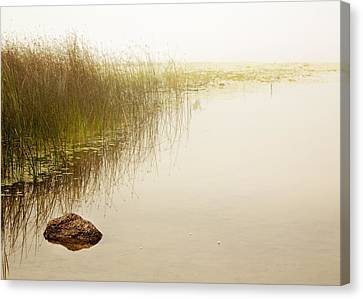 Waterscape Canvas Print by Barbara Smith