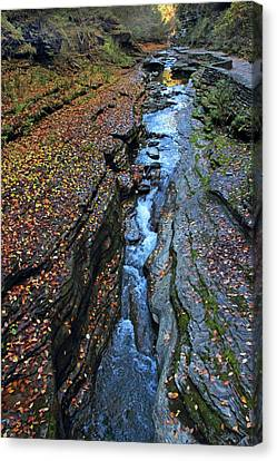 Watkins Glen Abstract Canvas Print by Jessica Jenney