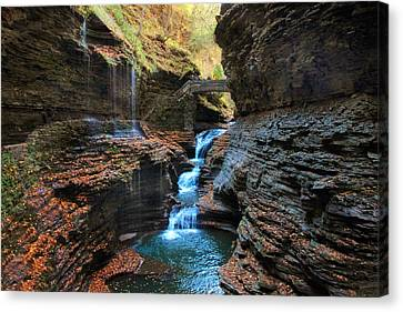 Watkins Glen Canvas Print by Jessica Jenney