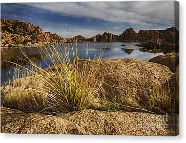 Watson Lake Arizona 13 Canvas Print by Bob Christopher