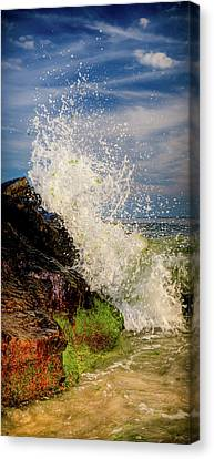 Waves Canvas Print by David Hahn