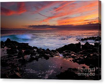 Waves Of Paradise Canvas Print by Mike  Dawson