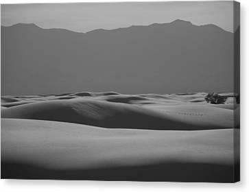 Waves Canvas Print by Ralf Kaiser