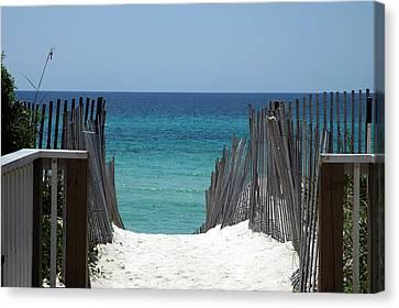 Way To The Beach Canvas Print by Susanne Van Hulst