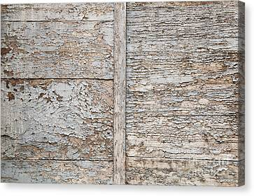 Weathered Wood Background Canvas Print by Elena Elisseeva