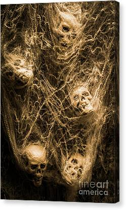 Web Of Entrapment Canvas Print by Jorgo Photography - Wall Art Gallery