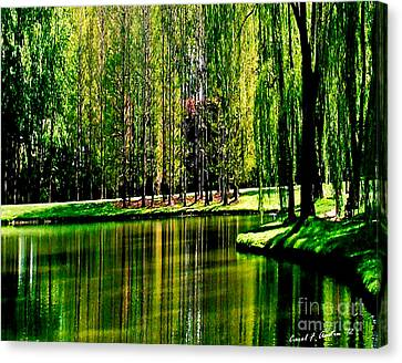 Weeping Willow Tree Reflective Moments Canvas Print by Carol F Austin