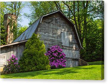 Well Preserved Canvas Print by Sandy Hooper