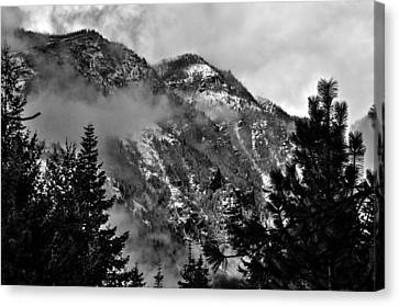 Wenatchee National Forest Black And White 2 Canvas Print by Pelo Blanco Photo