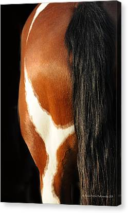 What A View Canvas Print by Renee Forth-Fukumoto