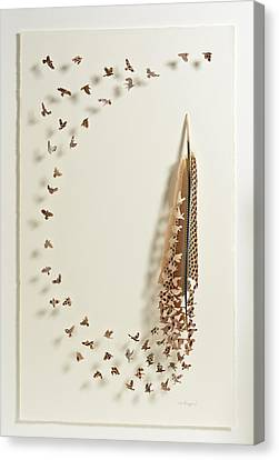 What Happens When You Tip A Feather Upside Down Canvas Print by Chris Maynard