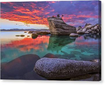 What Is Right Canvas Print by Steve Baranek