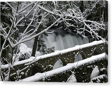 Whatcom Falls Winter 08 Canvas Print by Craig Perry-Ollila